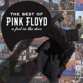 Pink Floyd | The Best of Pink Floyd: A Foot In the Door (Remastered)